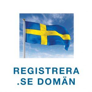 ideplanket.se-Registrera-SE-domän-w1024x1024